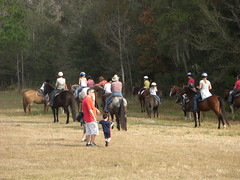 animal sports, equestrianism, ranch, equestrian sport, trail riding, endurance riding, horse,
