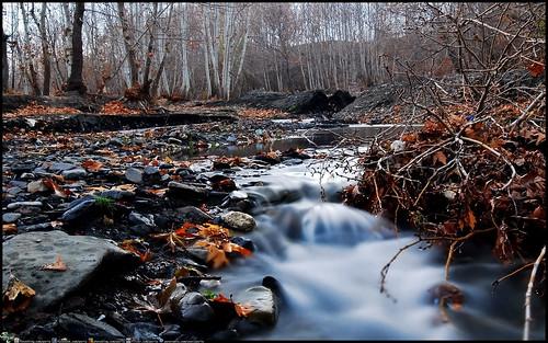 autumn nature river landscape iran mashhad khorasan razavi shandiz bizdar