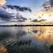 Sunset Flight by ` Toshio '