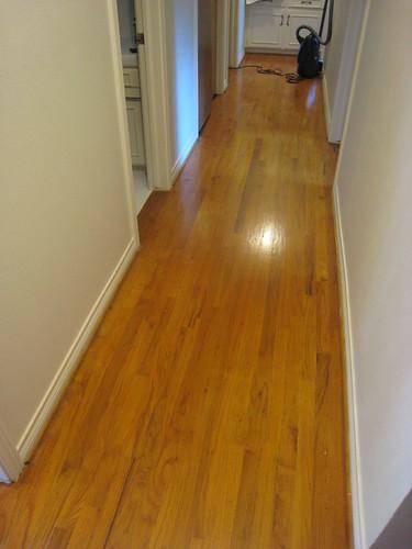 Refinish hardwood floors should refinish hardwood floors for Refinishing painted hardwood floors