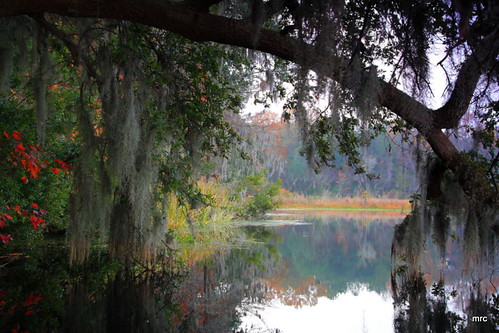 trees usa water sunrise canon reflections landscape kayak lakes southcarolina goosecreek naturesfinest tamron1750 40d canon40d photosexplore vosplusbellesphotos visionqualitygroup visionquality100