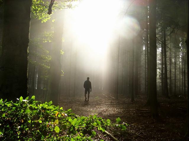 Podhoubí pestrého programu Ekologických dnů Olomouc 2013 prorůstá do Stokorcového lesa