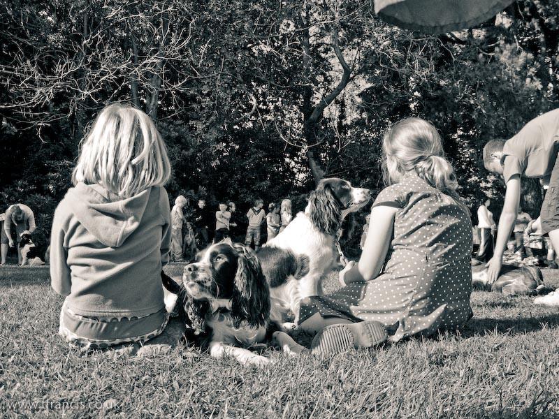 Rspca Dog Show Stanley Park Blackpool