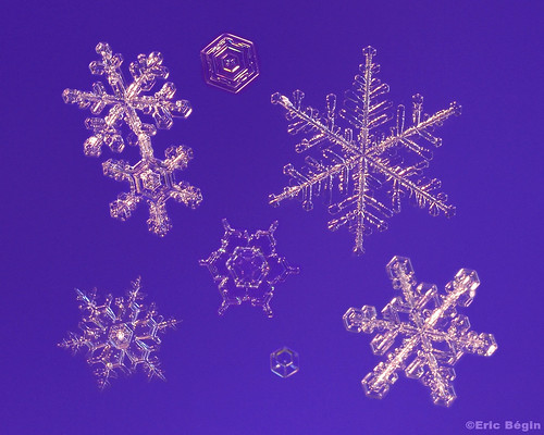 Snowflakes / Flocons de neige ( 1st of 3 )