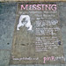 Missing by JudyGr