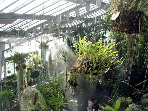 301 moved permanently - Jardin invernadero ...