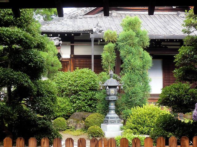 Garden // Jardin  Flickr - Photo Sharing!