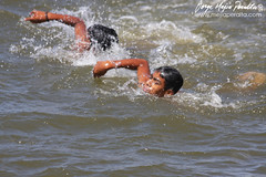 individual sports, open water swimming, swimming, recreation, outdoor recreation, extreme sport, water sport, freestyle swimming,