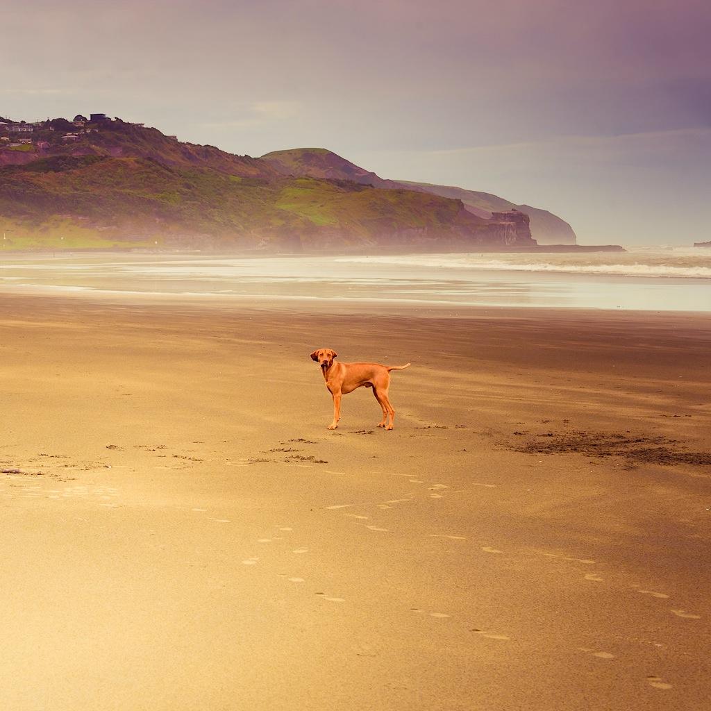 пляж муриваи