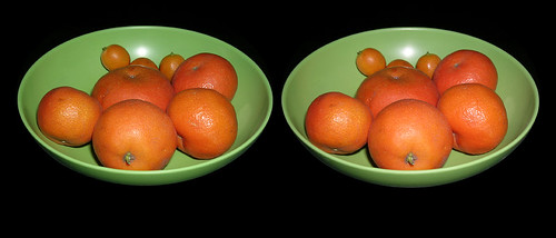 CITRIC DUTY