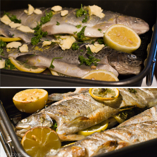 Stuffed Grilled Trout Recipes — Dishmaps