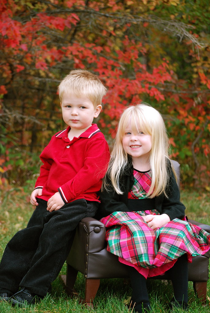 Toddler Christmas Dresses from Sears.com