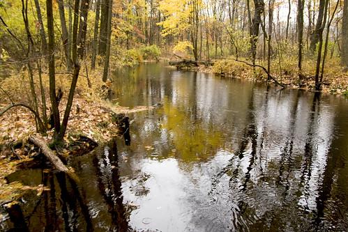 park new york roosevelt historic national eleanor wsr valkill 200810280026