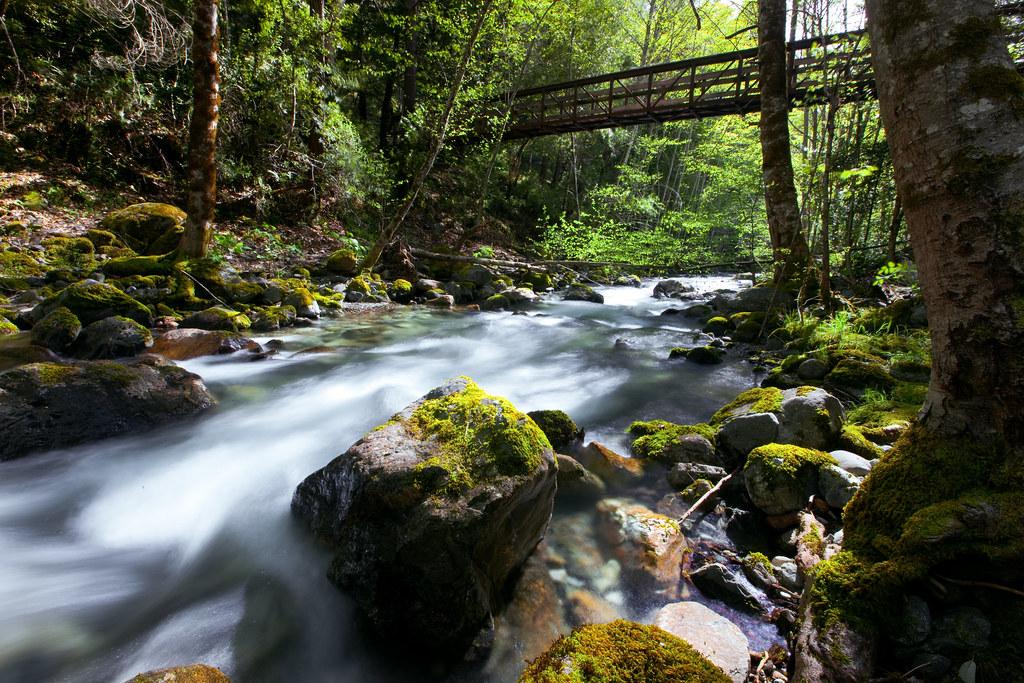 Wiskey Creek