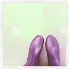 今日は長靴