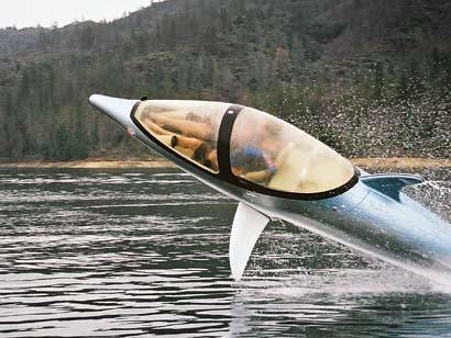 my underwasser dolphin