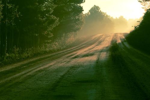 road trees mountains fog rural forest sunrise dawn xpro nikon colorado dirt contrejour goldhill d40 project365 1855mmf3556 title:band=mounteerie title:song=uhohitsmorningtimeagain title:album=singers