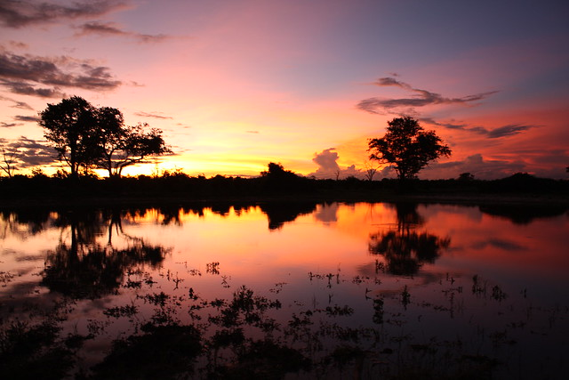 Sunset in Botswana by flickr user james_peacock