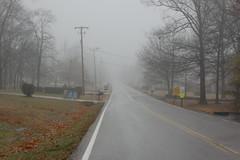Fog on Sanders (6 / 365)