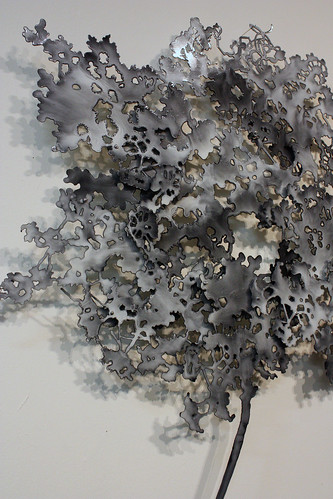 Untitled (Ash Puff) detail