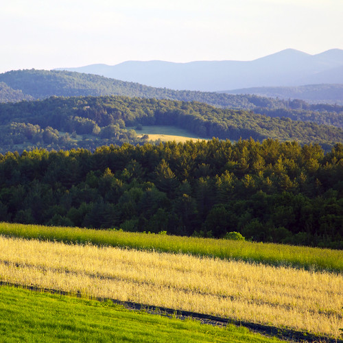 blue trees mountains green field vermont view farmland hay 500x500