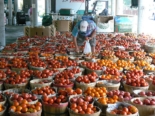 baskets of tomatoes