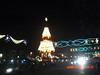 Big Christmas Tree 1