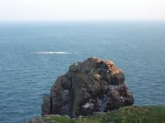 Le Cap Fréhel