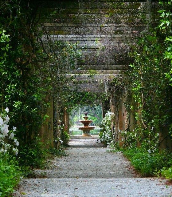 Beautiful Archway At Airlie Gardens Flickr Photo Sharing