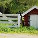 """""""Grindhuset"""" at Tømmerholt, 08.06.2011"""