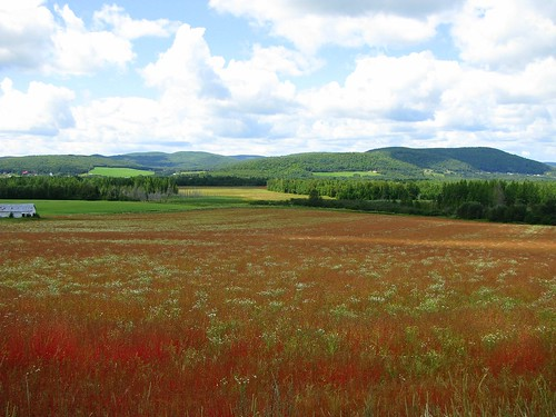 landscape paysage blogfkchs