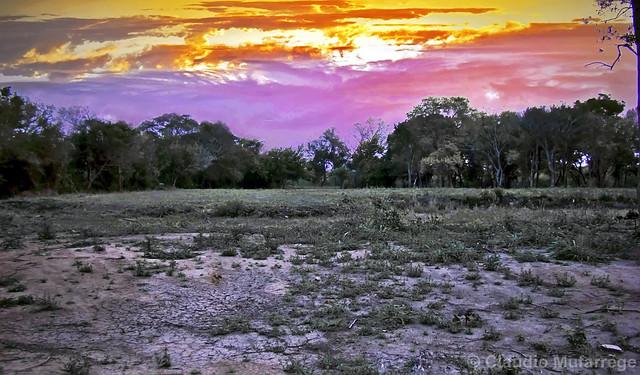 Sequía/Drought