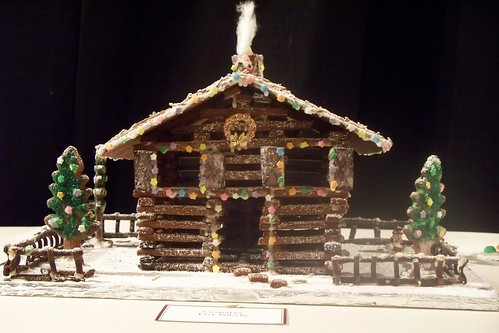 3136647913 63bce0087a Crazy Christmas Houses