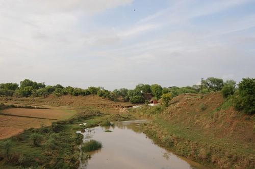 rivers uttarpradesh geo:dir=299 parari june2008 geo:lat=25085655 geo:lon=82735965 riverbasins
