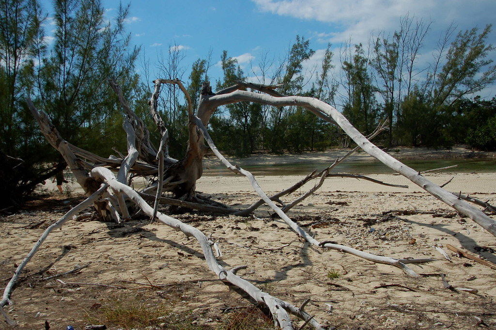 Grand Bahama Island Airport Code