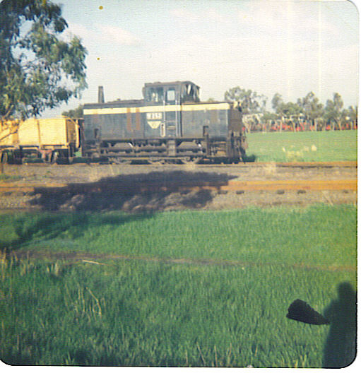 Geelong Super Phosphate Sidings 4 c 1978 by MurrayJoe