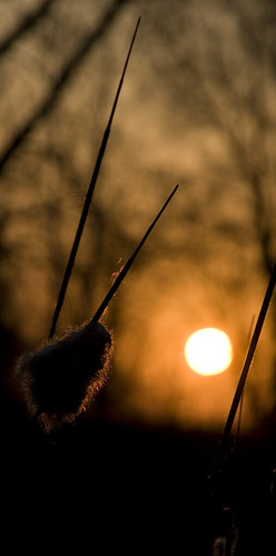 park minnesota sunrise cattail mapped heritagepark stcloud