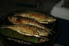 animal(0.0), mackerel(0.0), trout(0.0), cod(0.0), pacific saury(0.0), sauries(0.0), forage fish(0.0), sardine(0.0), milkfish(0.0), smoked fish(1.0), fish(1.0), fish(1.0), seafood(1.0), oily fish(1.0), food(1.0), dish(1.0),
