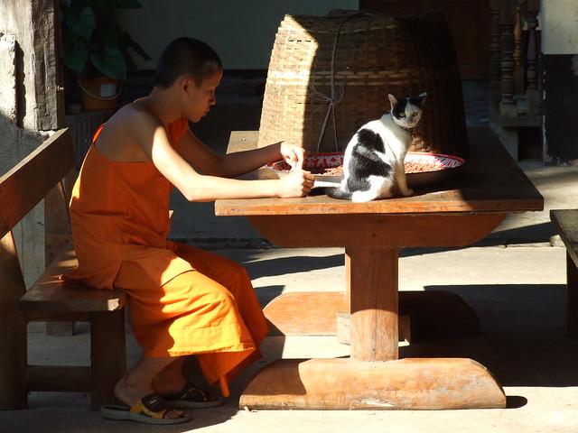 Khun Yuam, 28/11/2008