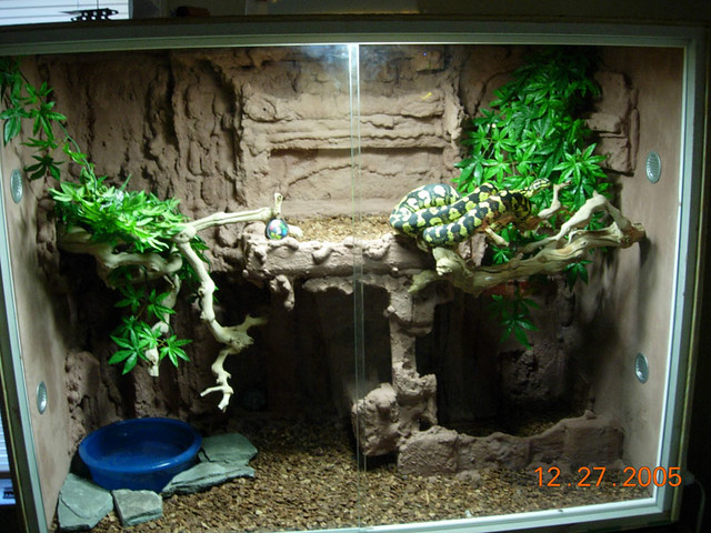 Reptile Cages Rock Wall Reptile Tanks For Salereptile Tanks For Sale
