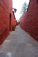 wall, road, red, cobblestone, alley, road surface, walkway, infrastructure,