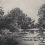In the days before Upper Arlington became a more developed community, the residents enjoyed wooded areas and shallow streams as well as the nearby Scioto River. This photograph, captioned 'Over the Riffle,' appeared in the October 1918 issue of the Norwester magazine, which described an Upper Arlington Fishing Club outing on the banks of the Scioto River.This image available online at the UA Archives >>View this image in the 'Norwester' magazine at the UA Archives >>----------------------------------------Identifier: hinw12p007i01Date (yyyy-mm-dd): c. 1918-10Original Dimensions: 19 cm x 12 cmFormat: Black and White Halftone PhotographSource: Norwester, October 1918, page 7Original Publisher: Upper Arlington Community (Ohio)Location/s: Columbus (USA, Ohio, Franklin County)Repository: Upper Arlington Historical SocietyDigital Publisher: Upper Arlington Public Library, UA ArchivesCredit: UA Archives - Upper Arlington Public Library (Repository: UA Historical Society)
