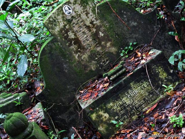 Bukit Brown - Tomb of Wong Chin Yoke 01