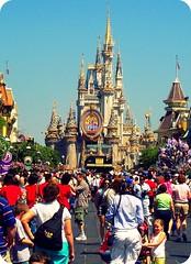 world, walt disney world, tourism, outdoor recreation, crowd, amusement park,