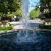 Small photo of Montecito