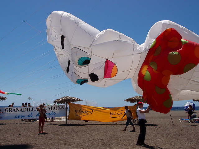 Ghost of Kite Festival Past