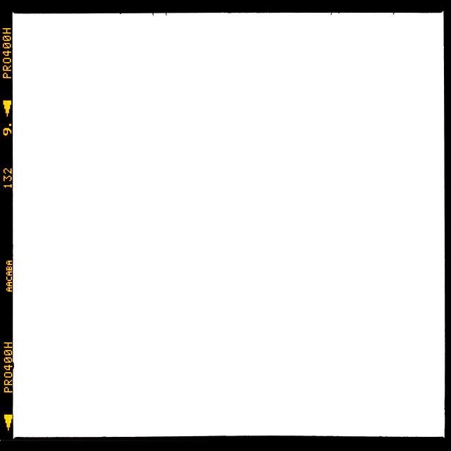 fuji pro400h diacord frame