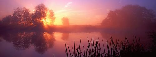 england mist sunrise panoramic riverthames xpan oxfordshire sonning thamesvalley