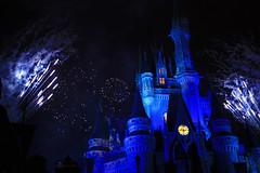 recreation(0.0), outdoor recreation(0.0), resort(0.0), fireworks(1.0), walt disney world(1.0), event(1.0), new year(1.0), light(1.0), darkness(1.0), midnight(1.0), blue(1.0), night(1.0), amusement park(1.0),