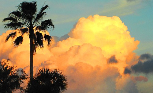 sunset florida sunsets 1001nights southflorida browardcounty photographicallyyours flickrlovers